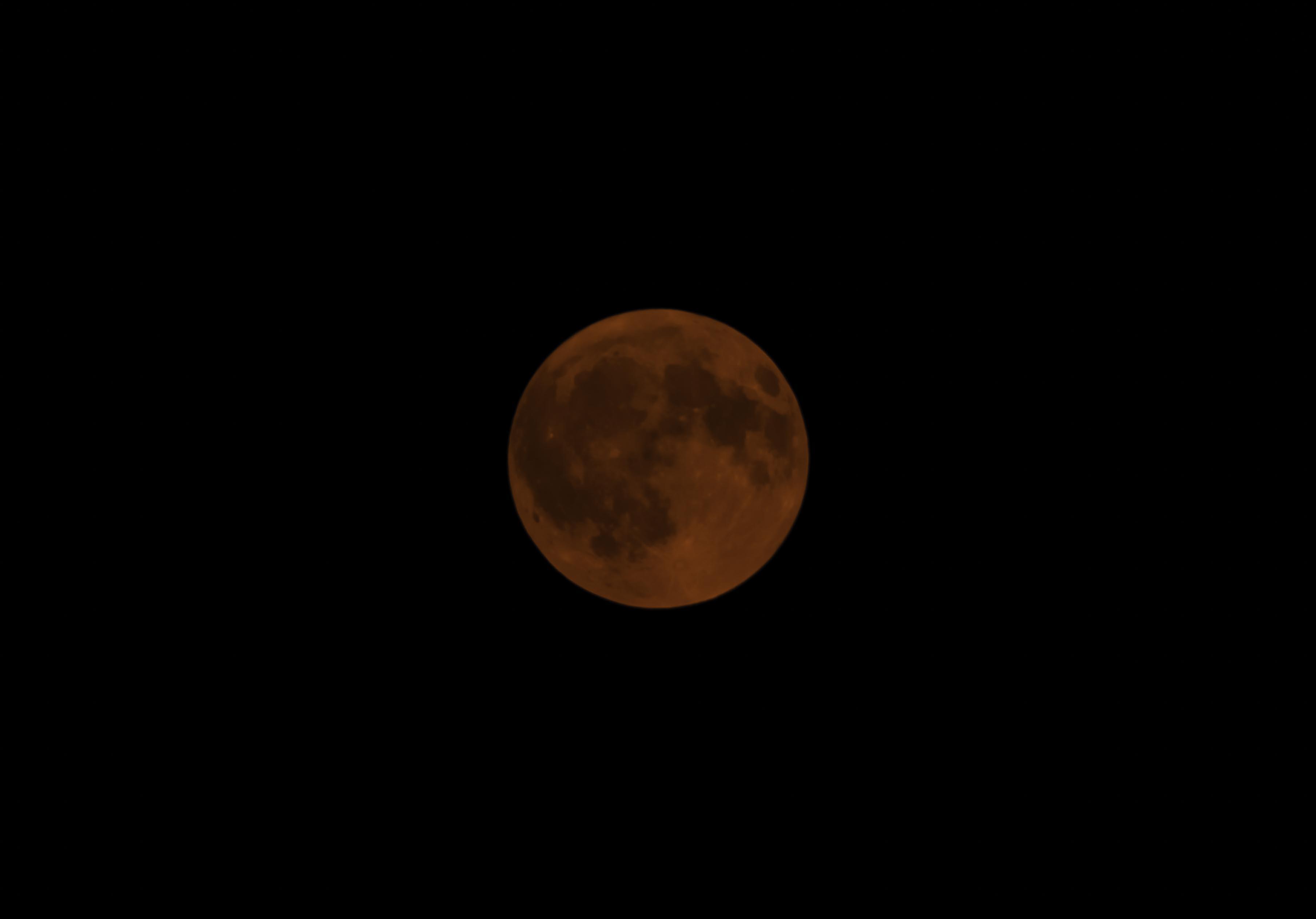 2017 Blood Moon (1 of 1) — UNCHARTED